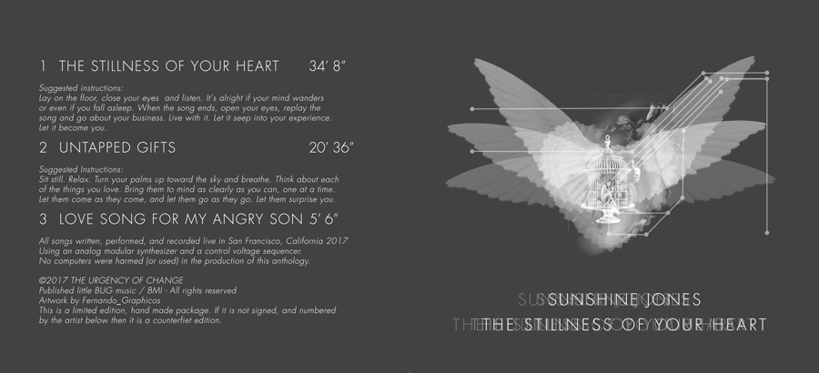 sǝuoſ ǝuıɥsuns tuoc02 sunshine jones the stillness of your heart